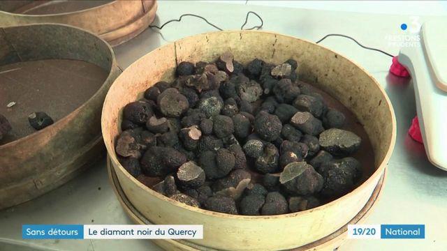 Lot : la truffe, le diamant noir du Quercy