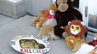 Des peluches et des notes sont déposés devant le cabinet du dentiste Walter James Palmer le 29 juillet 2015, le braconnier qui a abattu Cecil le lion. (ANN HEISENFELT/AP/SIPA / AP)