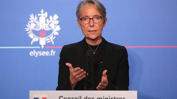 La ministre des Transports, Elisabeth Borne, présente son projet de loi à l'issue du Conseil des ministres, le 26 novembre 2018 à l'Elysée. (LUDOVIC MARIN / AFP)