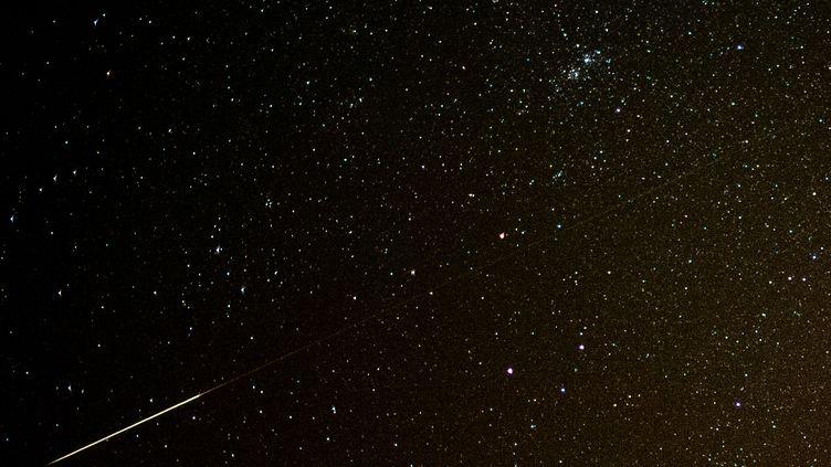 Une étoile filante dans le ciel étoilé, observée depuis l'est de l'Allemagne, le 11 août 2013. (PATRICK PLEUL / DPA)