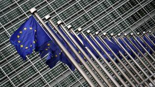 La Commission européenne doit présenter vendredi 22 février 2013 ses prévisions de croissance en Europe. ( MAXPPP)
