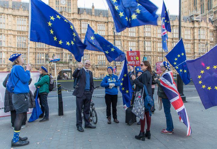 David Hughes (au centre) et d'autres militants anti-Brexit se regroupent à Londres (Royaume-Uni), le 25 février 2019. (MARIE-VIOLETTE BERNARD / FRANCEINFO)