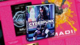 """Première de couverture de""""Cyberpunk - Histoire(s) d'un futur imminent"""" deStéphanie Chaptal, Jean Zeid et Sylvain Nawrocki. (Editions Ynnis)"""