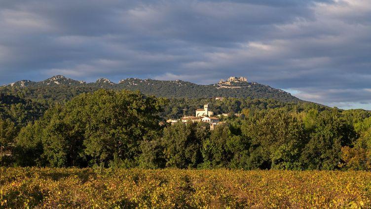 Des vignes entourant le village deSaint-Jean-de-Cuculles (Hérault) et le château deMontferrand, le 3 novembre 2018. (MAXPPP)