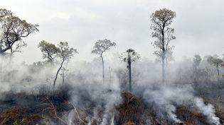 De la fumée s'échappe des feux de forêt dans le parc national Otuquis, en Bolivie, le 26 août 2019. (AIZAR RALDES / AFP)