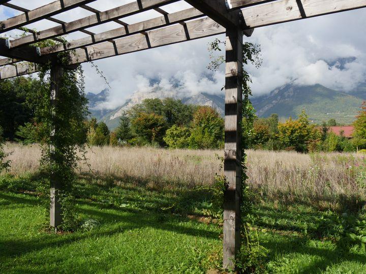 Une zone de hautes herbes permet de capter la rosée et de limiter considérablement l'évaporation des sol. Photo prise en octobre au Mas des Béalières, en Isère. (ISABELLE MORAND / RADIO FRANCE / FRANCE INFO)