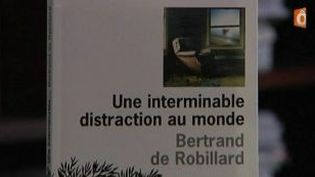 Une interminable distraction au monde, le nouveau roman de Bertrand de Robillard  (Culturebox)