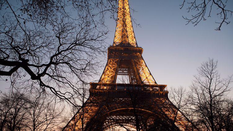La Tour Eiffel illuminée, le 29 mars 2014, à Paris. (MANUEL COHEN / AFP)