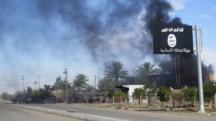 Un drapeau de l'Etat islamique dans la ville de Saadiya en Irak, le 24 novembre 2014. (  REUTERS)