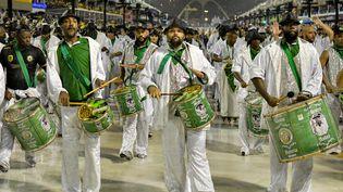 L'école de samba de Mocidade défile sur le sambodrome lors du festival de Rio de Janeiro, le 29 février 2020 (THIAGO RIBEIRO / AGIF VIA AFP)