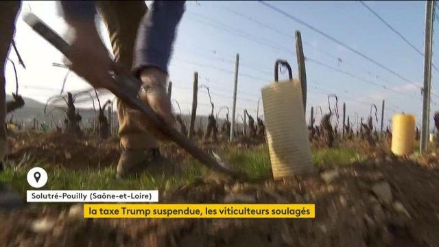 Economie : les taxes américaines suspendues quatre mois, les viticulteurs français peuvent respirer
