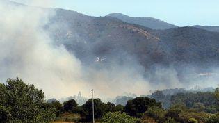 En 2016, les communes de Maureillas et du Boulou (Pyrénées-Orientales) avaient été victimes d'un incendie qui avait ravagé 35 hectaresde végétations. (MAXPPP)