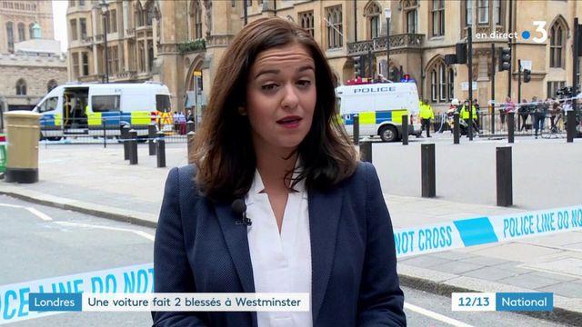 Attaque au Parlement britannique : l'acte volontaire d'un homme seul