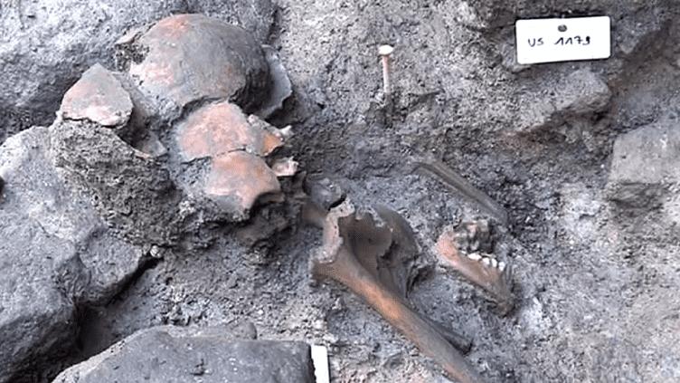 Une importante découverte archéologique pour l'histoire du Mont-Saint-Michel  (France 3 / Culturebox)