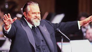 Orson Welles à Paris le 28 février 1982  (Pierre Guillaud / AFP)