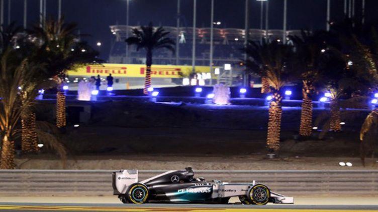 Lewis Hamilton (Mercedes) (MARWAN NAAMANI / AFP)