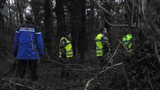 Des gendarmes fouillent la forêt de Dirinon (Finistère), le 1er mars 2017. (FRED TANNEAU / AFP)