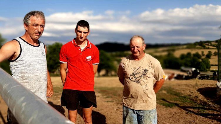 Jean-Michel, Benoît et Pierre Rozier éleveurs à Trivy, en Saône-et-Loire, mardi 28 juillet. (VALENTIN DUNATE / RADIO FRANCE)