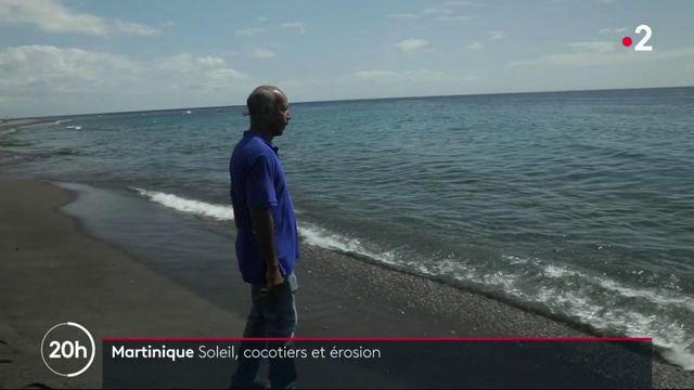 Martinique : les plages menacées de disparition
