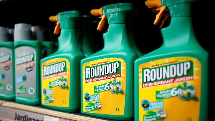 Du désherbant de la marque Roundup, contenant du glyphosate, dans un magasin de Bonneuil-sur-Marne (Val-de-Marne), le 16 juin 2015. (CHARLES PLATIAU / REUTERS)