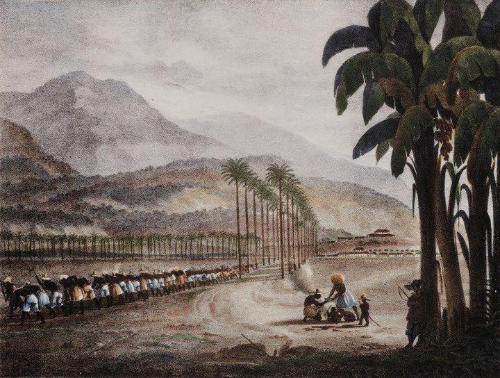 Esclaves aux champs près de la Havane, début XIXe siècle. Tableau d'Ambroise Louis Garneray, musée d'Aquitaine, cours Pasteur, Bordeaux. (AFP - MANUEL COHEN / MCOHEN )