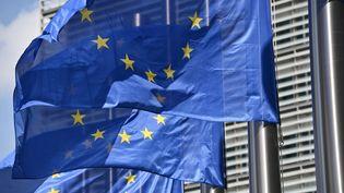 Des drapeaux européens devant le Parlement à Bruxelles (Belgique). (MAXPPP)