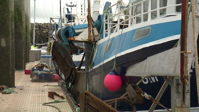 La perpective que les négociations entre Britanniques et Européens n'aboutissent pas, d'ici le 31 décembre, inquiète les pêcheurs bretons. (C.Rousseau / France Télévisions)