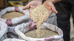 Un homme verse des graines de sésame dans une boutique du Caire (Egypte), le 27 juin 2019. (PEDRO COSTA GOMES / FAO / AFP)