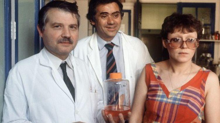 Les Pr Luc Montagnier (G), Jean-Claude Chermann et Françoise Barre-Sinoussi à l'institut Pasteur à Paris (25 avril 1984) (AFP/MICHEL CLEMENT)