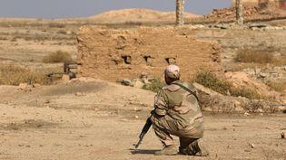 Un soldat irakien regarde la destruction dusite archéologique de Nemrod (Irak), le 15 novembre 2016 (SAFIN HAMED / AFP)