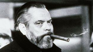 Orson Welles en 1973  (Kobal / The Picture Desk)