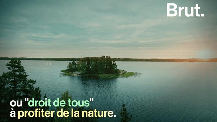 """Le """"droit à la nature"""", c'est quoi ? (BRUT)"""