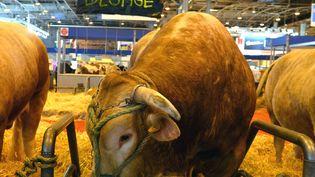 Une banderole accrochée au Salon de l'agriculture à Paris, le 26 février 2016. (MAXPPP)