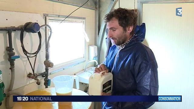Consommation : en Auvergne, les producteurs de volailles fermières misent sur la qualité