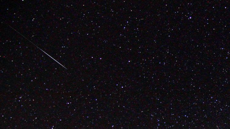 Une étoile filante observée à l'occasion des Géménides, le 14 décembre 2015, à Avren, en Bulgarie. (PETAR PETROV / NURPHOTO / AFP)