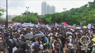 Des manifestants à Hong Kong. (France 2)