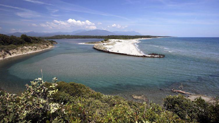 L'embouchure de l'étang de Diane, au nord d'Aleria, en Corse, le 12 juin 2021. En raison d'une pollution maritime aux hydrocarbures lourds au large de l'île, les plages ont été fermées et la pêche interdite. (PASCAL POCHARD-CASABIANCA / AFP)