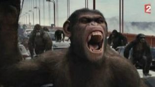 """""""La planète des singes, Les origines"""" de Rupert Wyatt au cinéma  (Culturebox)"""