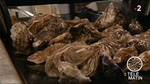 Ille-et-Vilaine : Les huîtres de Cancale bientôt à l'Unesco ?