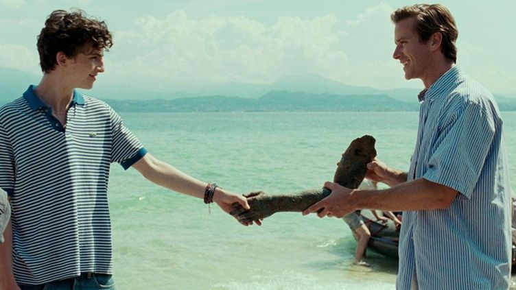 "Timothée Chalamet et Armie Hammer dans ""Call Me By Your Name"" de Luca Guadagnino  (Sony Pictures)"