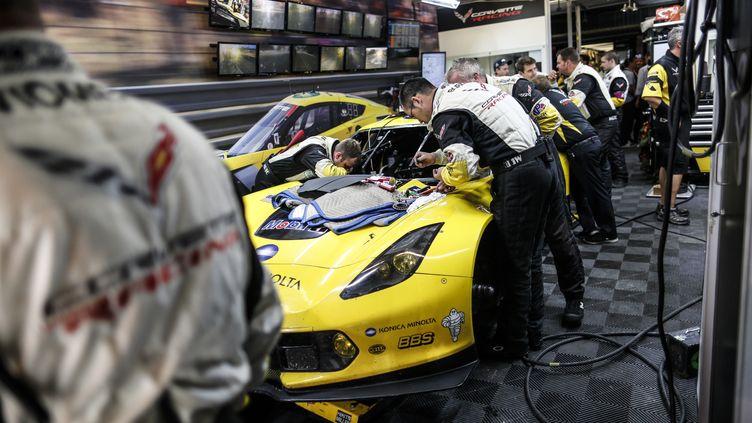 La Corvette C7.R N.63 ne prendra pas la départ des 24 Heures du Mans 2015 (ANTONIN GRENIER / DPPI MEDIA)