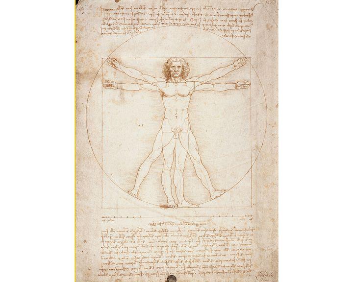 """""""L'Homme de Vitruve"""" de Léonard de Vinci, 1490, Gallerie dell'Accademia, Venise (© Luisa Ricciarini/Leemage / AFP)"""