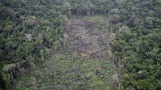 Une image de la déforestation de la partie colombienne de la fôret amazonienne, le 3 septembre 2020. (RAUL ARBOLEDA / AFP)