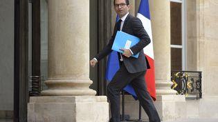 Benoît Hamon, alors ministre de l'Education nationale, entredans le palais de l'Elysée à Paris, le 22 juillet 2014. (MIGUEL MEDINA / AFP)