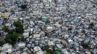 Vue de la capitale haïtienne Port-au-Prince, en mars 2020 (CHANDAN KHANNA / AFP)
