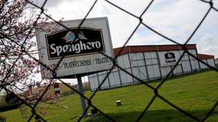 L'entreprise Spanghero, à Castelnaudary (Aude) a été mise en liquidation judiciaire en 2013. (MAXPPP)