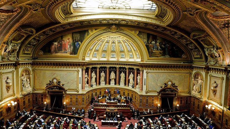 L'hémicycle du Sénat, à Paris, le 10 janvier 2019. (ERIC BERACASSAT / AFP)