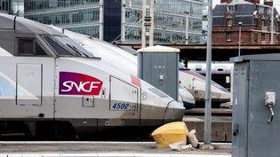 Des TGV à la gare de Lyon, le 13 mars 2018, à Paris. (DAVID SEYER / CROWDSPARK / AFP)