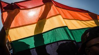Le drapeau arc-en-ciel, symbole de la communauté LGBT, brandi lors de la Gay pride à Durban, en Afrique du Sud, en juin 2018. (RAJESH JANTILAL / AFP)