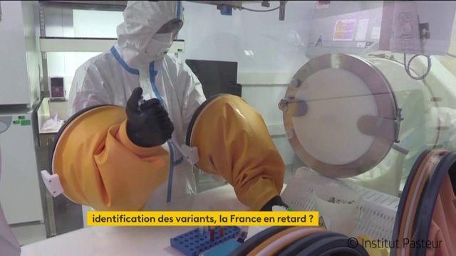 Coronavirus : la France en retard sur l'identification des variants